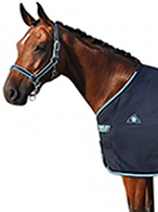 New! Smile Horsewear