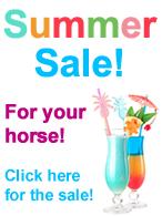 Summer Sale Horse