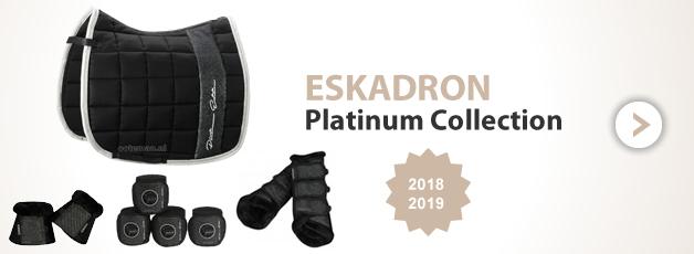 Eskadron Platinum at Ooteman