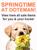 Springtime at Ooteman!