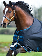 Rugs at Ooteman Equestrian