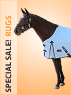 Special Sale Rugs