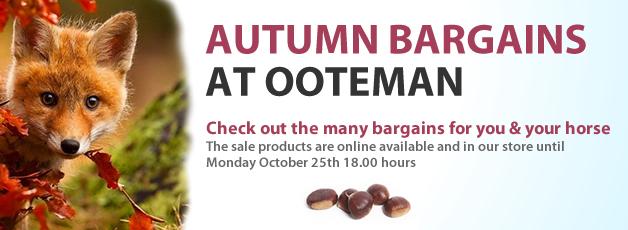 Autumn Bargains