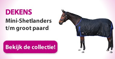 Ooteman Paardensport