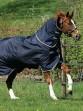 Ooteman Paardensport