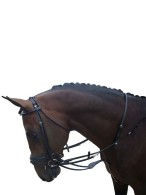 Vantaggio Harborough Martingale