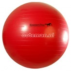 Jolly Mega Ball Red Small