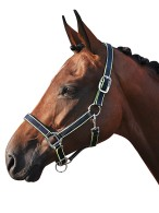 Smile Headcollar Set Navy/Lime