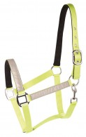 Harry's Horse Headcollar Reflective