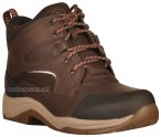 Ariat Riding Shoes Telluride II H2O Dark Brown