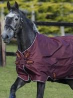 Amigo Turnout Rug Hero ACY Disc Lite Burgundy
