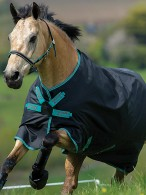 Amigo Turnout Rug Hero ACY Disc Black/Teal