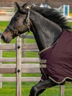 Amigo Turnout Rug Hero Ripstop Lite Fig