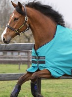 Amigo Turnout Rug Hero 900 Lite Capri